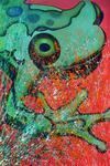 Frosch (100x150cm), Öl und Acryl auf Leinwand