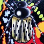 Käfer (100x100cm), Öl und Acryl auf Leinwand